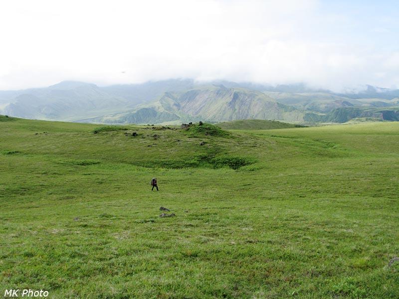 В зелёных Роханских полях...