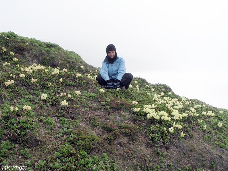 Катюха среди цветущей кашкары