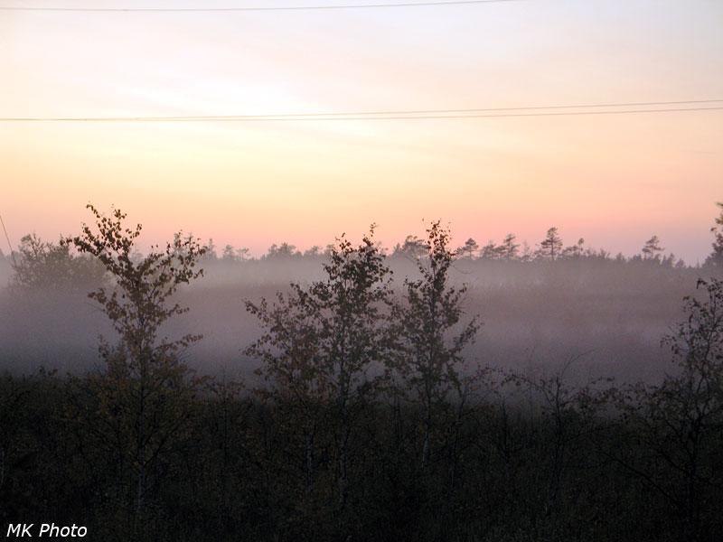 Туман у железной дороги