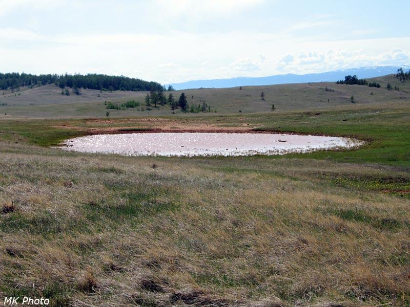 Солёное степное озерко
