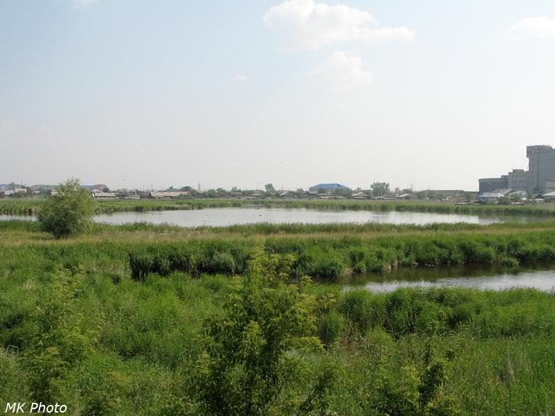 Озеро в городе Щучье