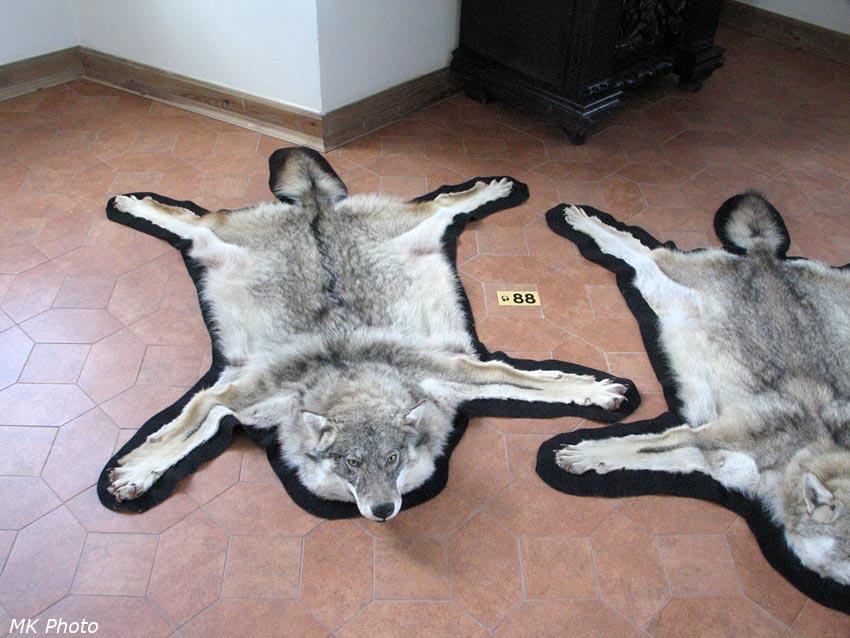 Волчьи шкуры