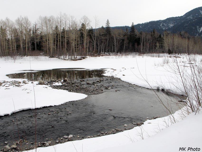 Протока Снежной
