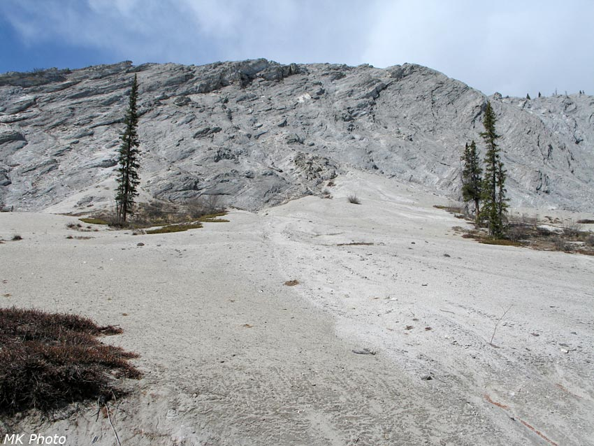 Серые скалы