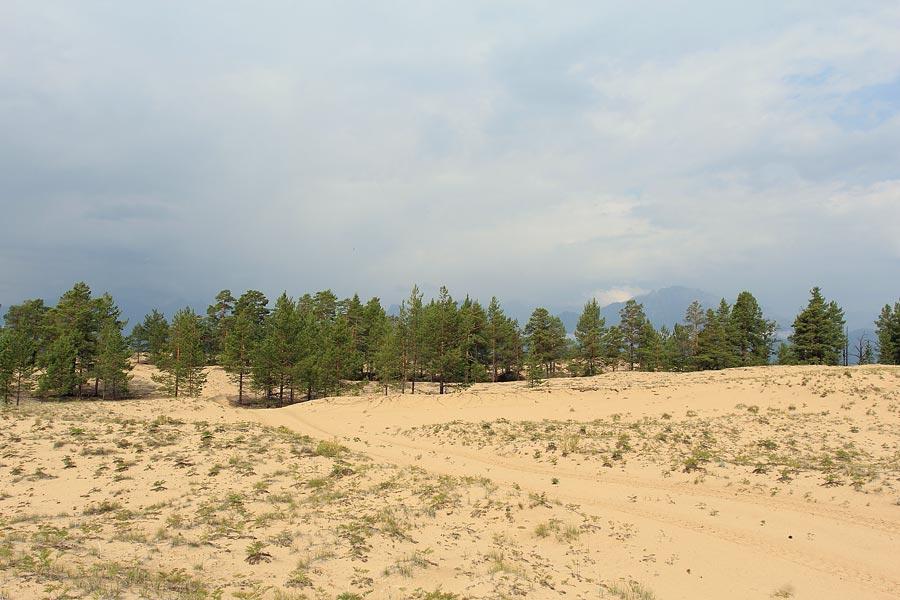 Дорога по песками