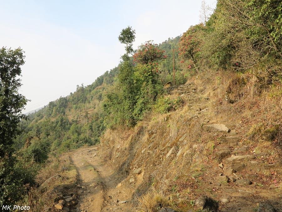 Дорога и тропа на спуске с перевала