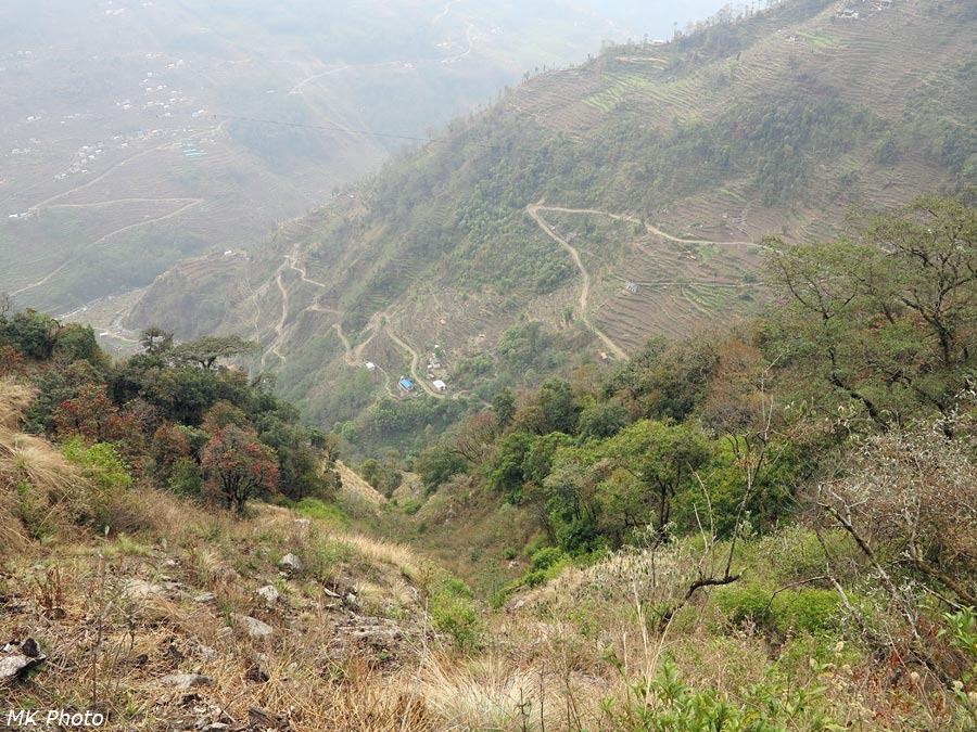 Дорожные серпантины и террасные поля на другом склоне долины Бхандар Кхолы