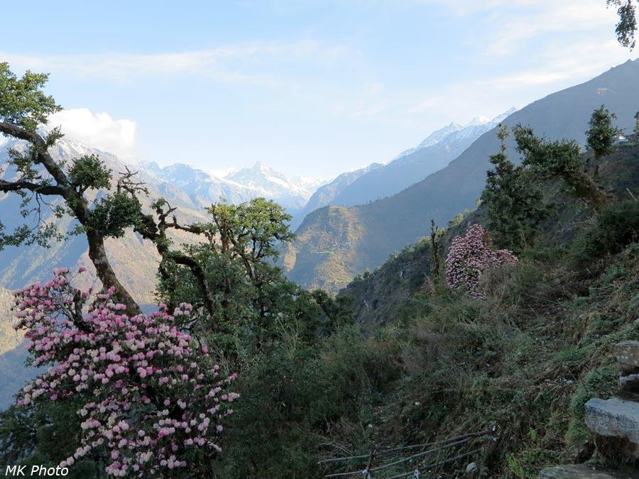 Вид в сторону верховий Дудх Коши Нади
