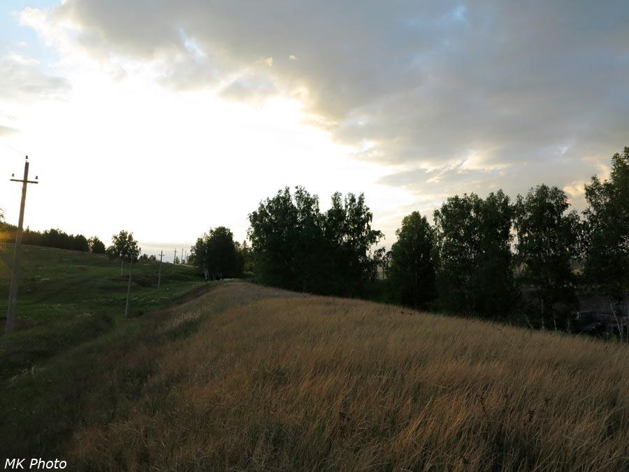 Насыпь, поросшая травой