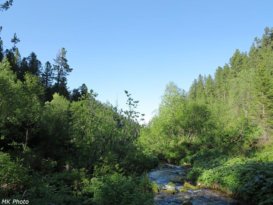 Устье притока Харлахты