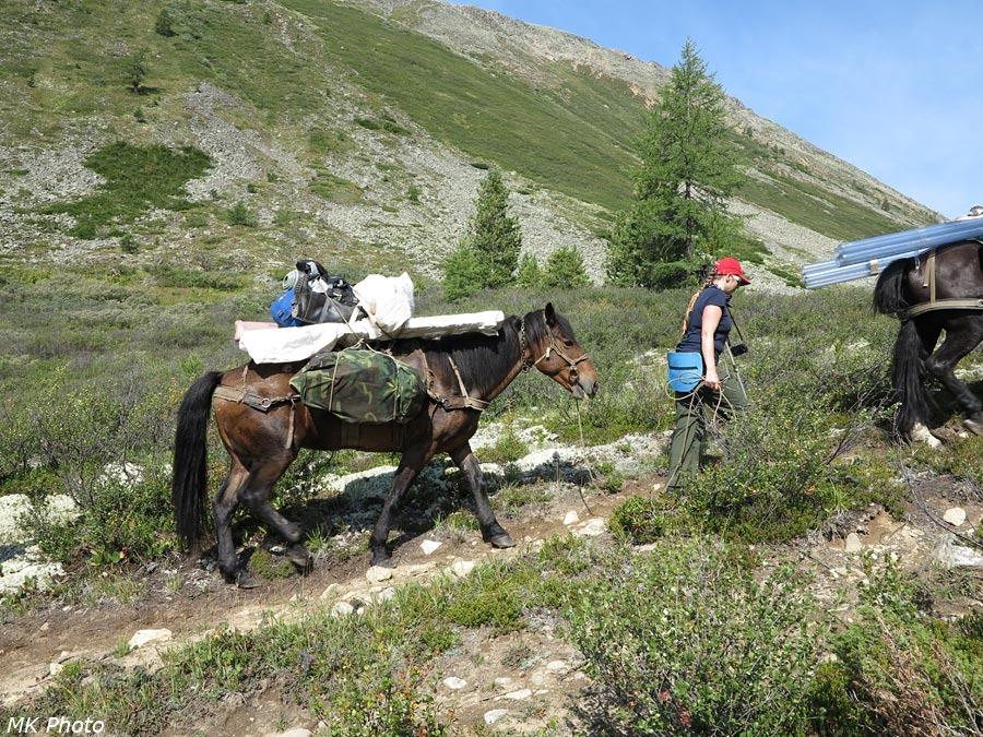 Марина с конём