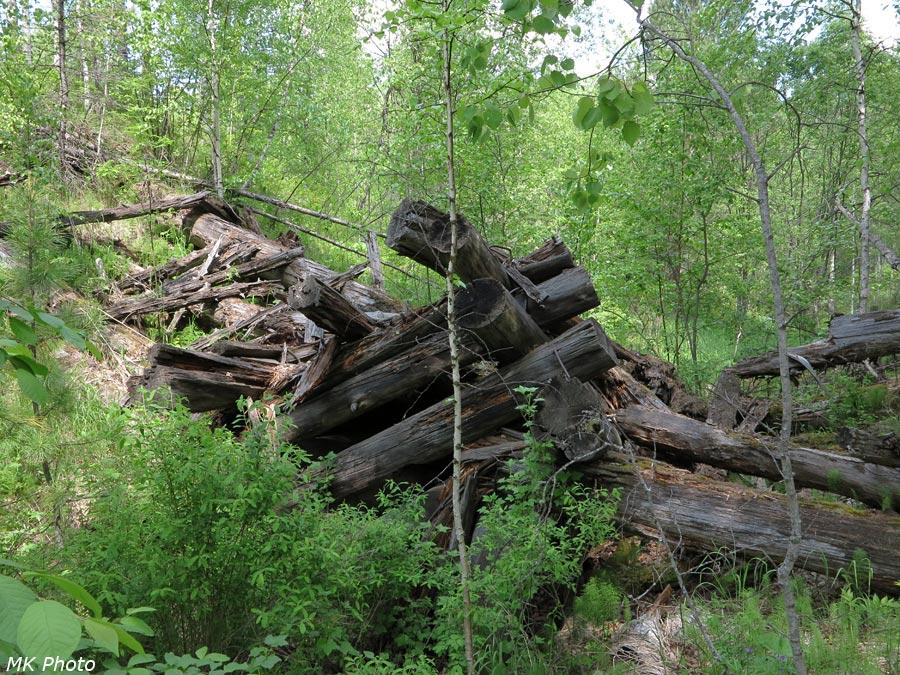 Остатки деревянного моста