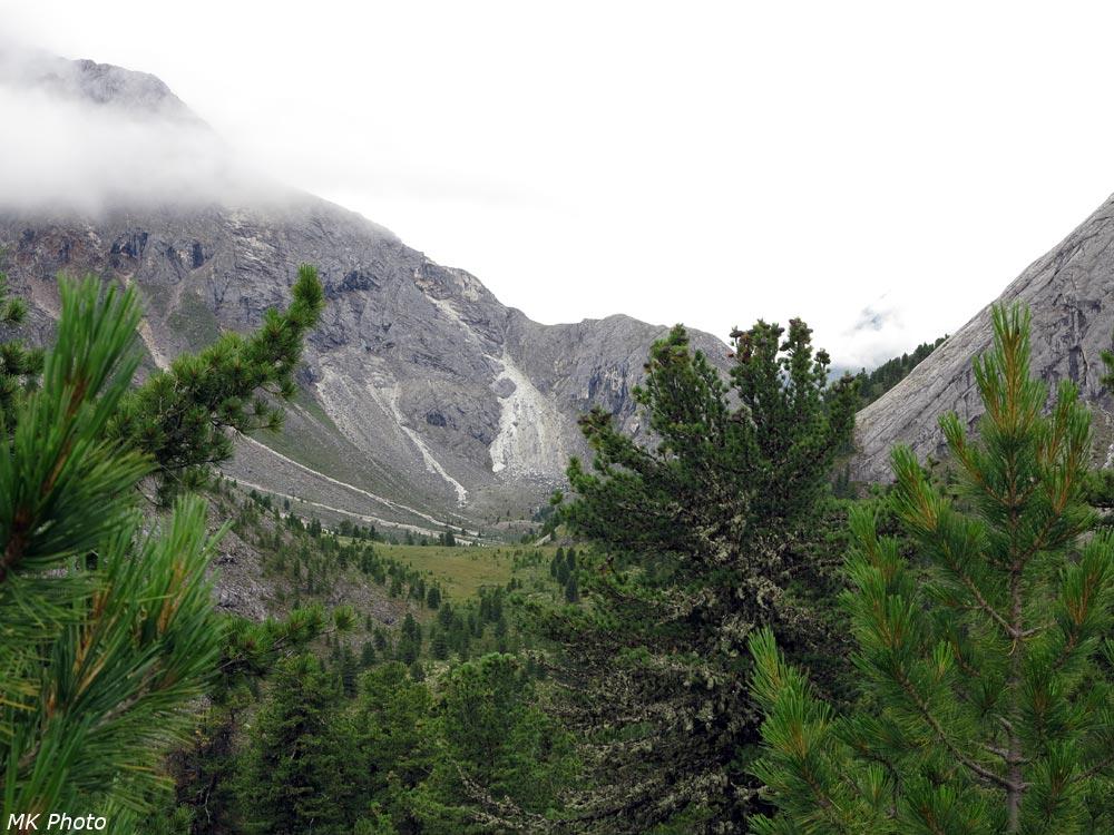 Долина притока Ара-Ошея