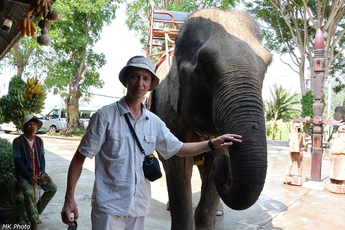 Я и слон