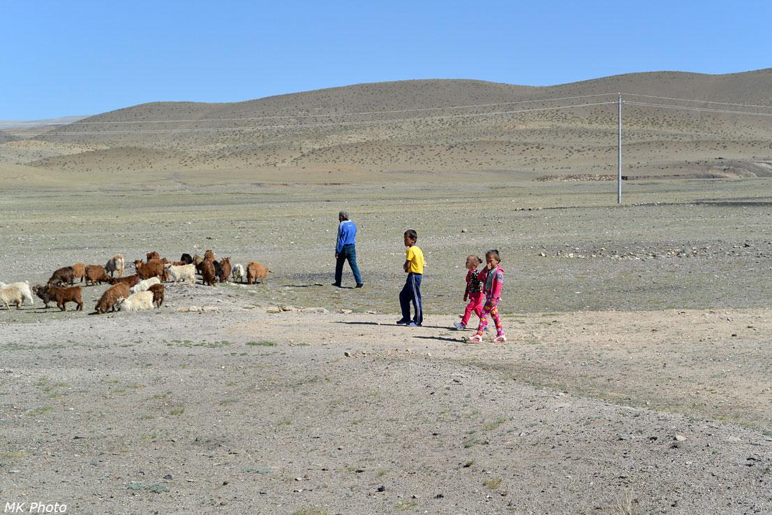 Мохнатые козы и местные жители