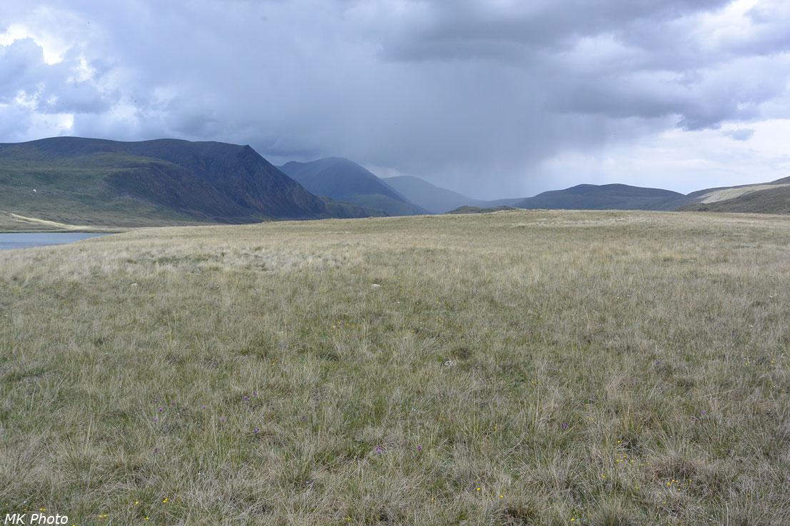 Верховья долины р. Богуты