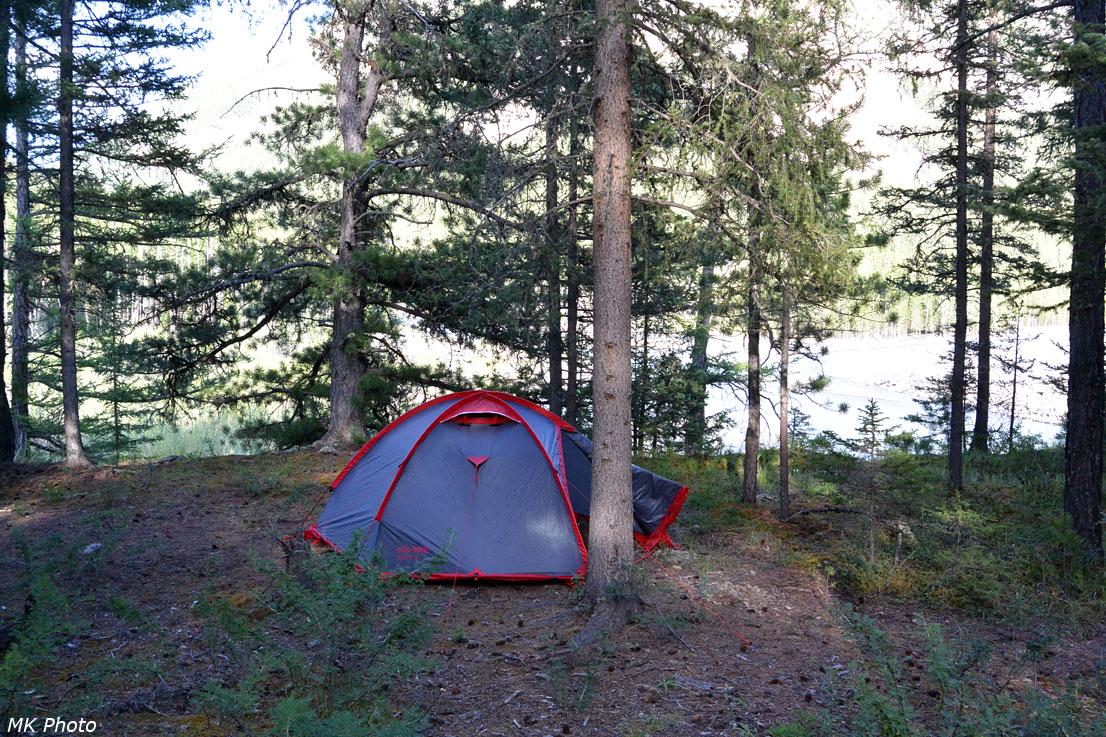 Палатка на уютной полянке