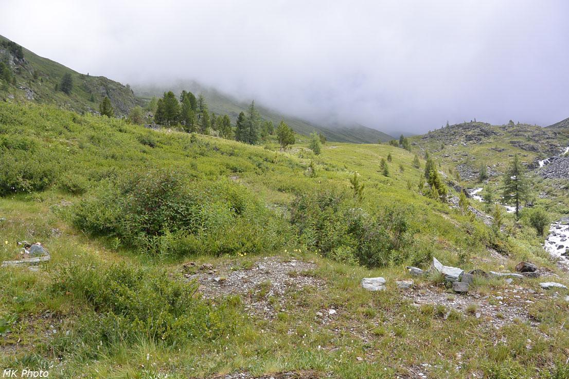 В долине Текелюшки