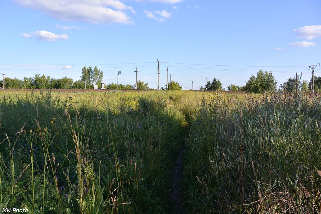 Тропинка между чётной и нечётной платформами о/п 10 км