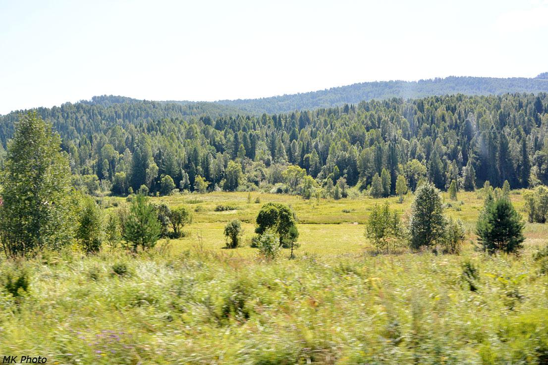 Петля в долине безымянного ручья