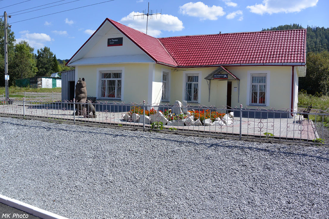 Станция Тенеш