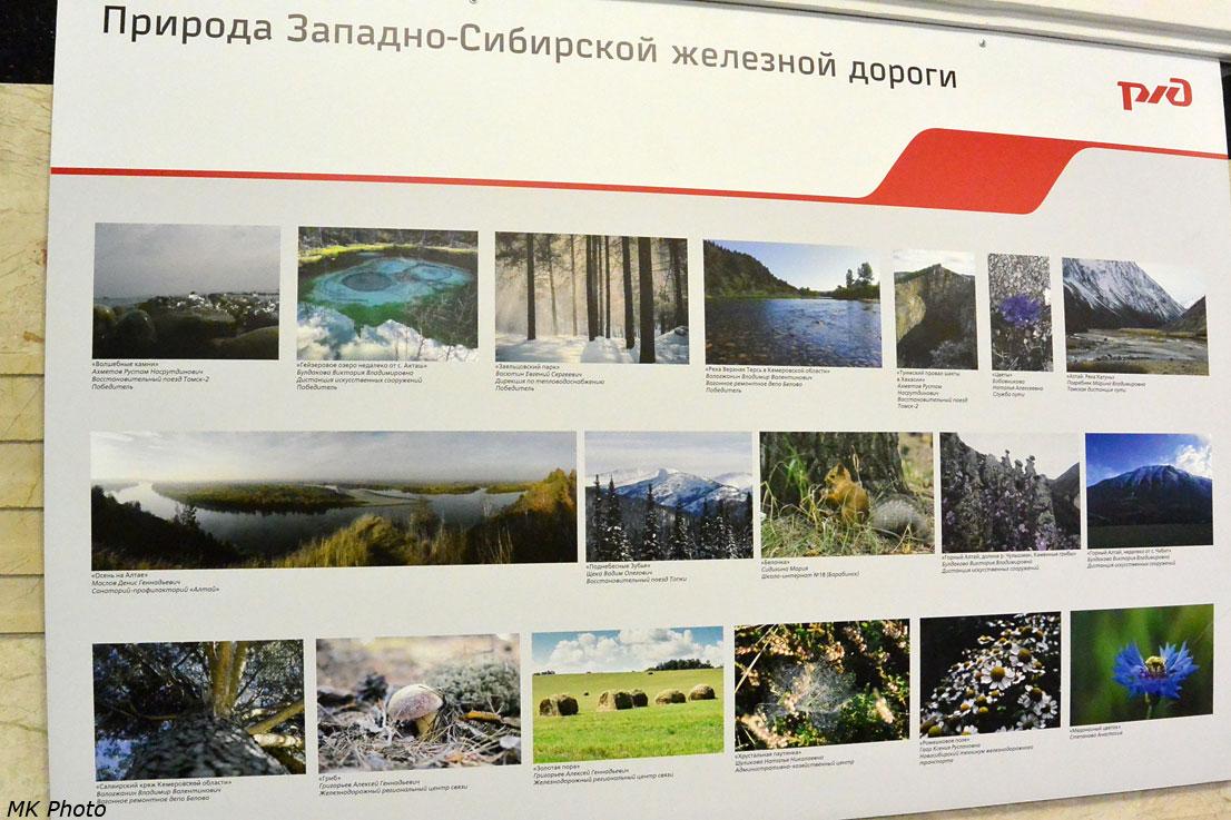 Природа Западно-Сибирской железной дороги