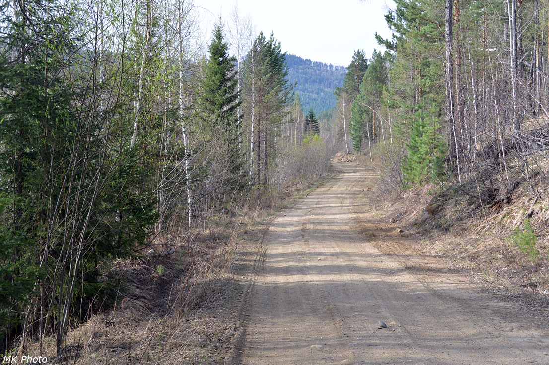 Дорога в долине Большой Черемшанки