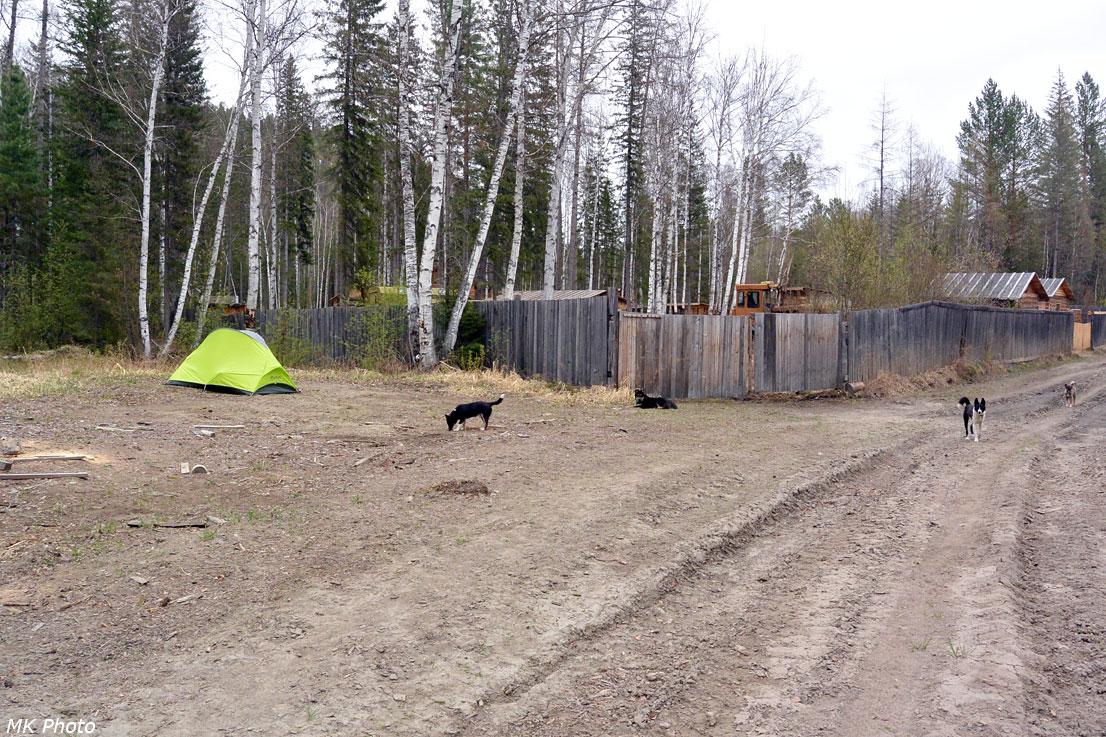 Палатка у охотбазы