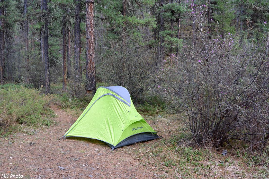 Палатка в клещёвнике