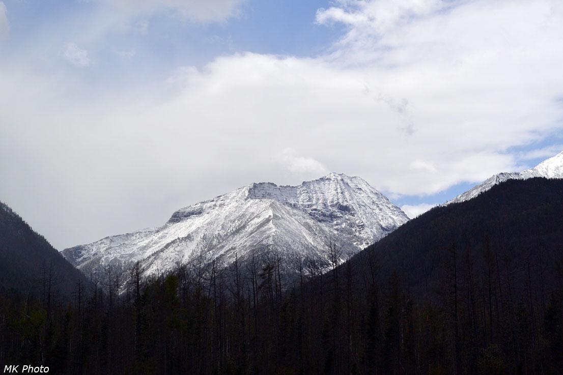 Долина Белокопытки