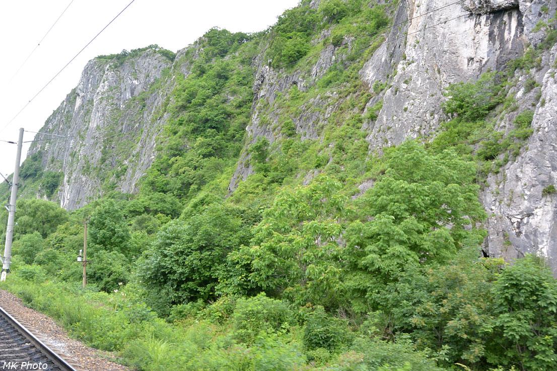 Скалы в долине р. Партизанская