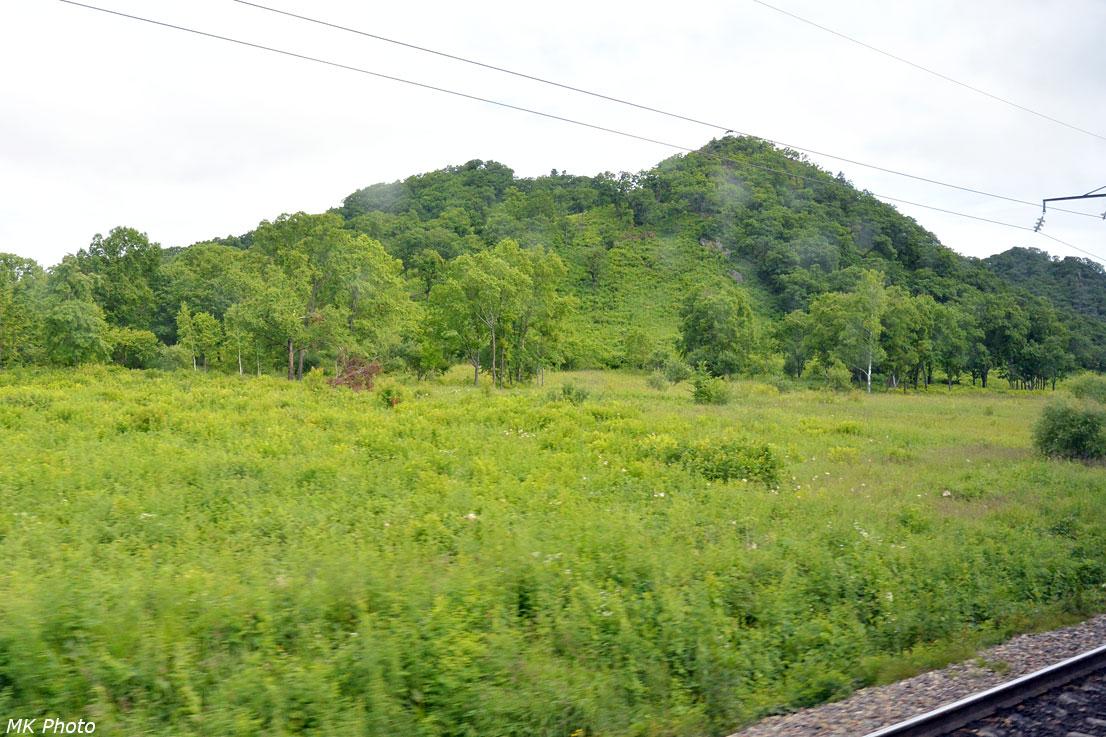 Сопки в долине Бикина