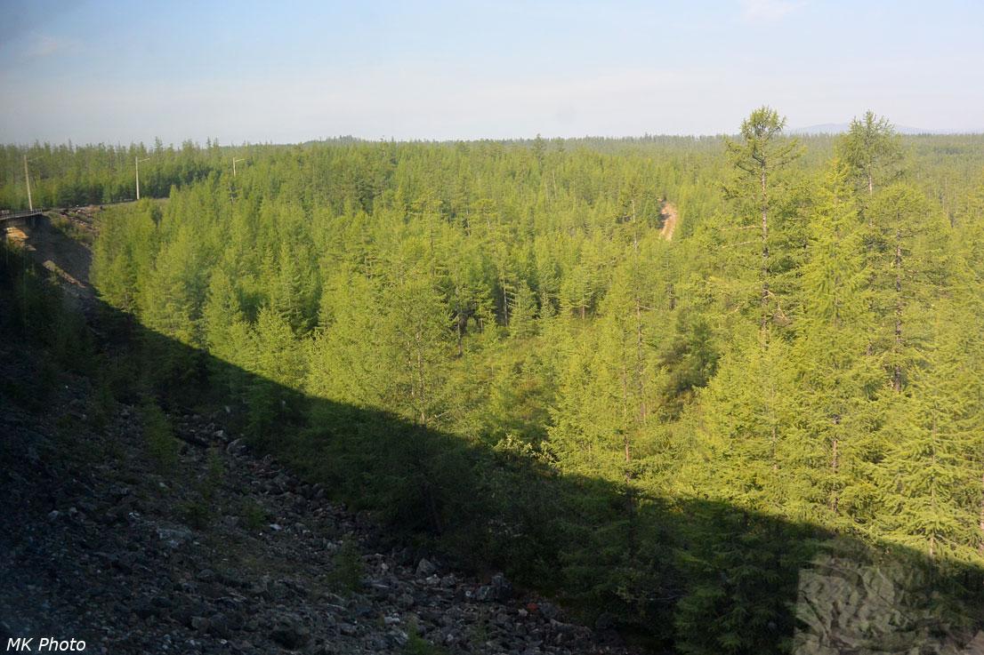Мост через руч. Лесной
