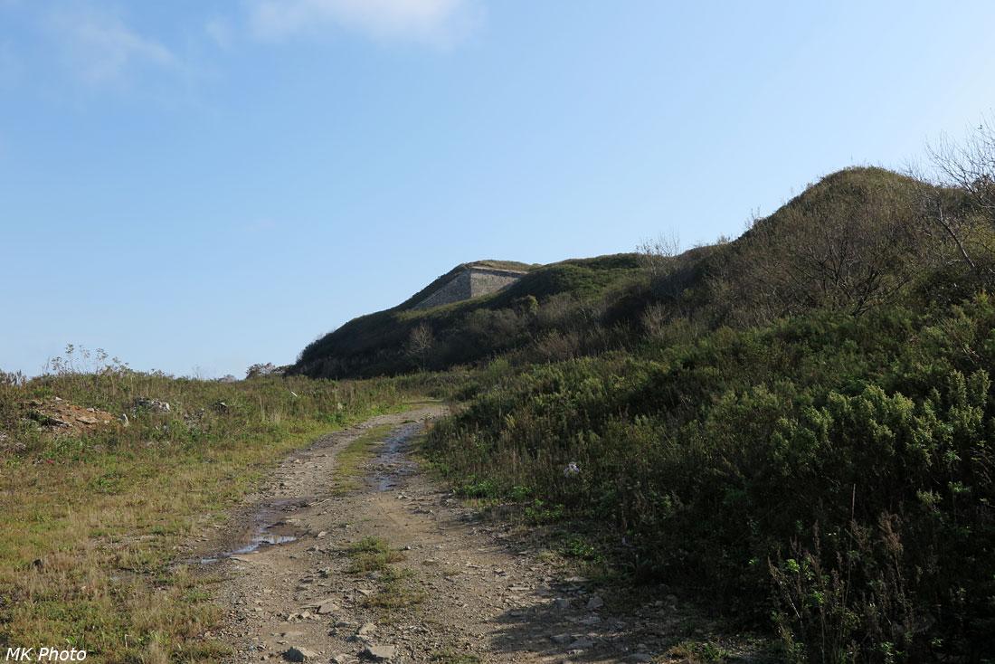 Дорога к вершине