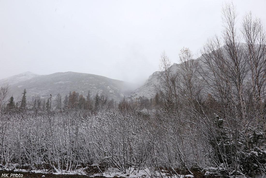 Вид снизу на долину ручья, пересекаемого улавливающим тупиком