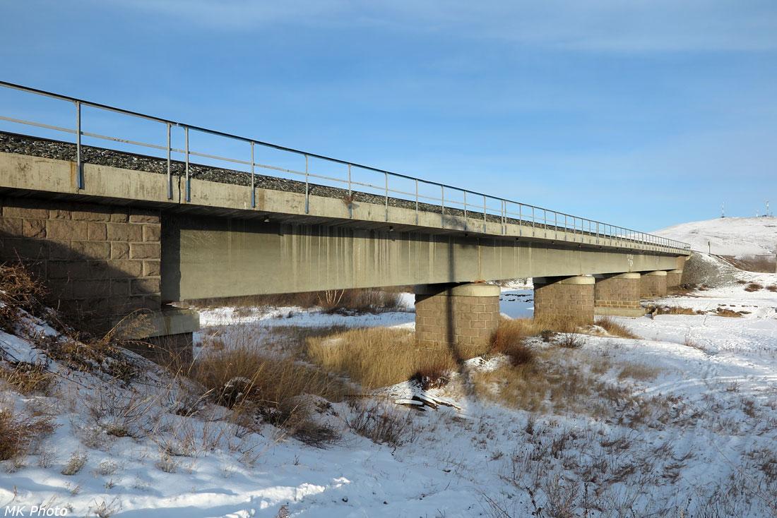 Мост через Оронгой