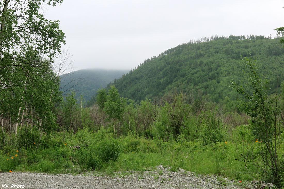 Долина Тумнина