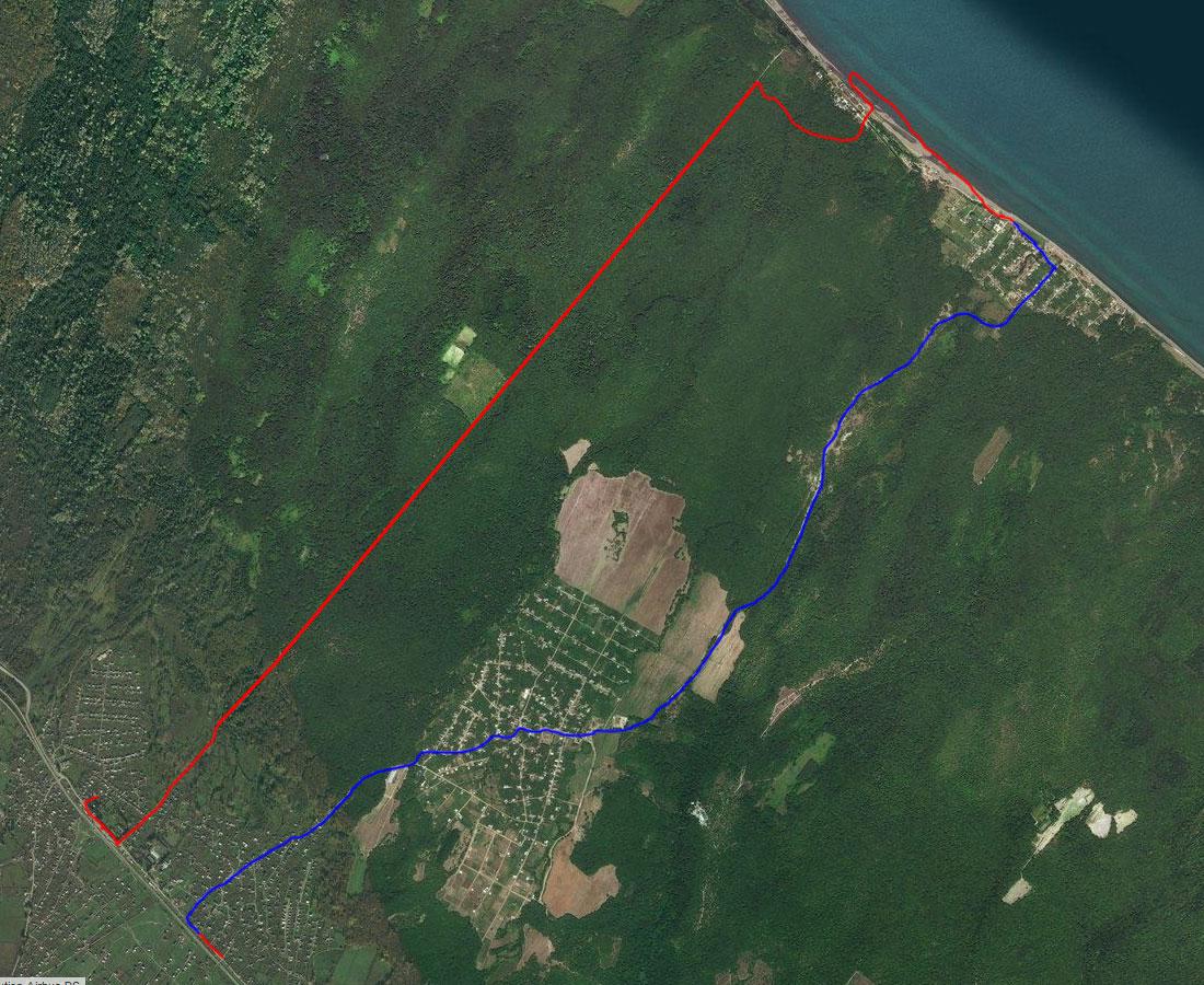 Спутниковый снимок Самурского леса